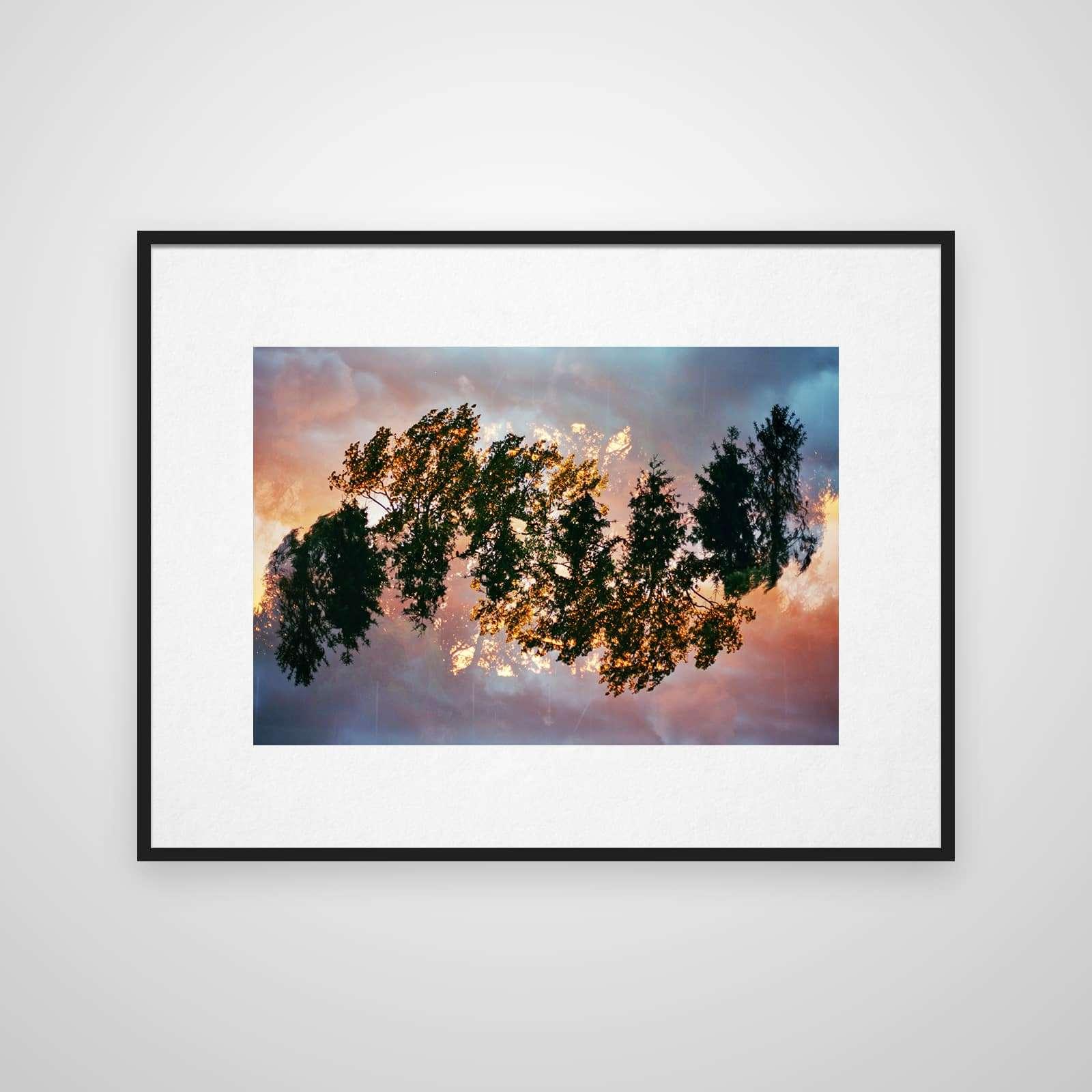 Mehrfachbelichtung von Baumkronen im Sonnenuntergang in einem Rahmen an der Wand